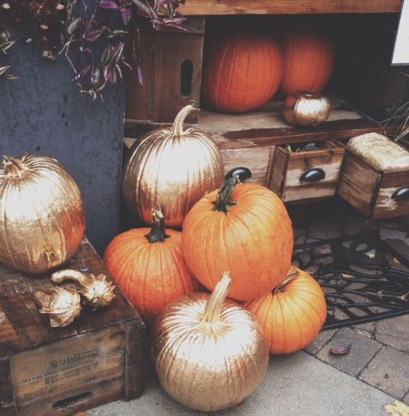 gold-painted-pumpkins